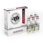 Buy Magnum Mag-Jack 250 in online-shop